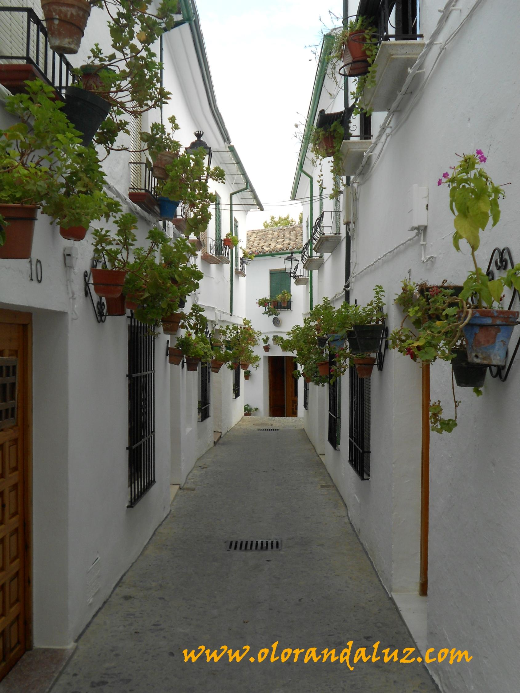 El barrio de la villa un remanso de paz olor andaluz for Casas estrechas