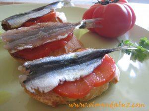 Tostas de sardinas marinadas con tomate y AOVE