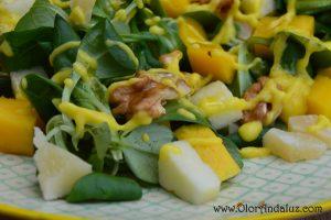 ensalada-de-mango