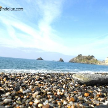 playa-almuñecar