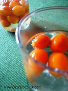 licor-de-naranjas-chinas