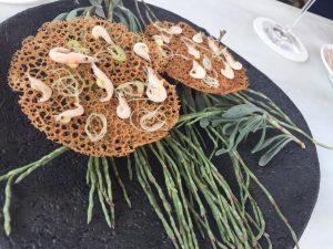 tortillitas-aponiente